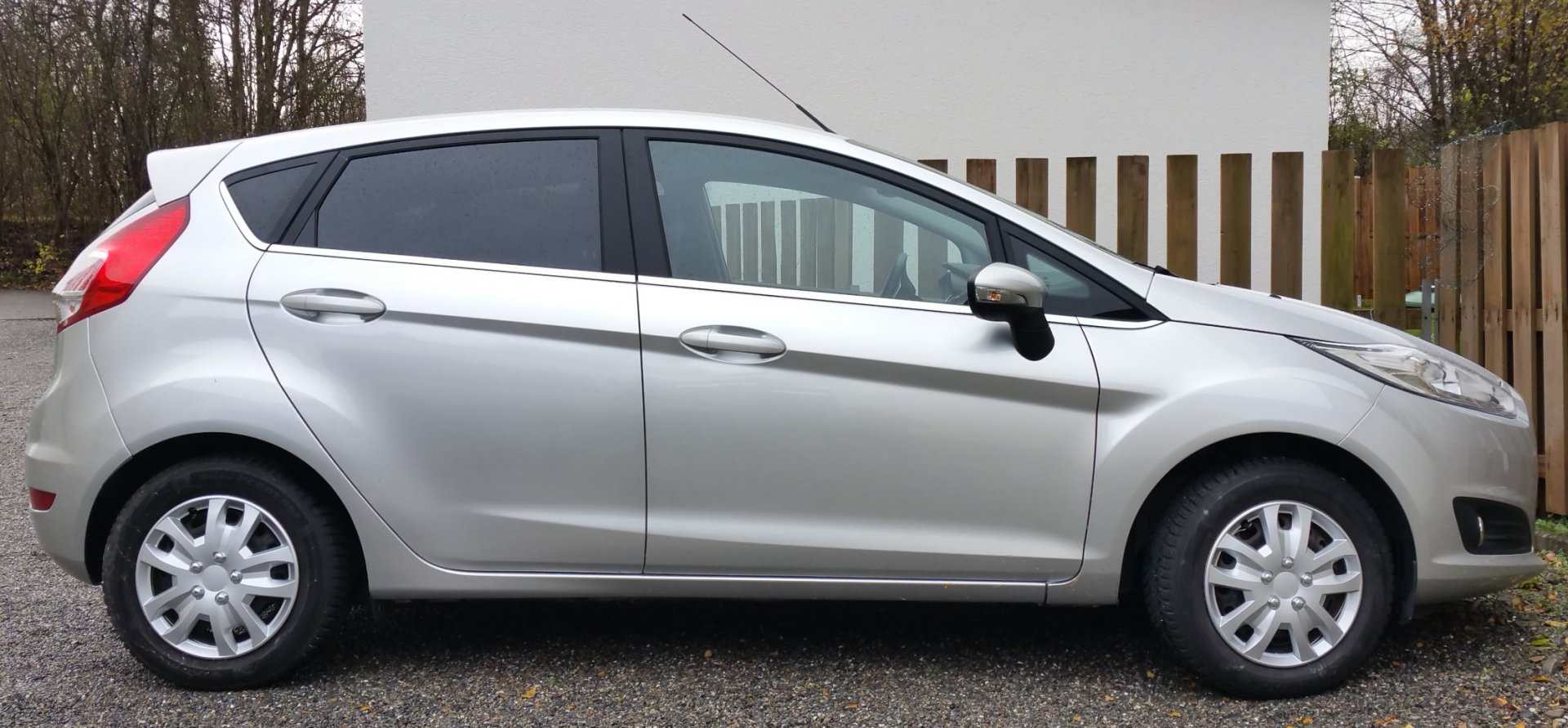 Fiesta jpg