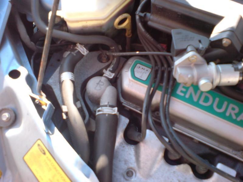 Motorraum Ford Ka   Jpg